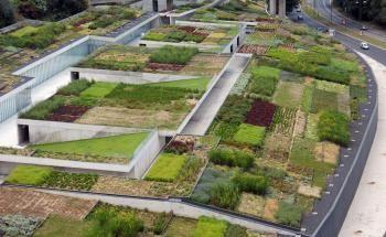 Foto 5 de Jardins do Paço - Arquitetura Paisagista, Lda