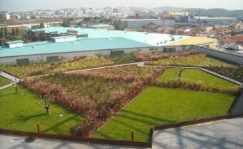 Foto 3 de Jardins do Paço - Arquitetura Paisagista, Lda