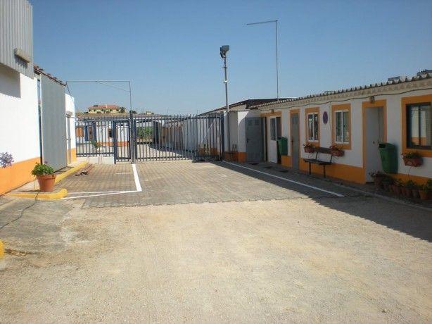 Foto 2 de Centro Hipico D. Maria