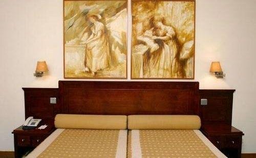 Foto 2 de Hotel Moliceiro