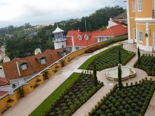 Foto 1 de WeGarden - Design e Manutenção de Jardins