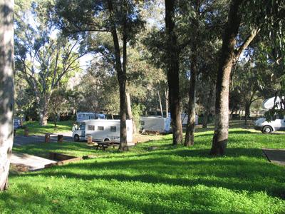 Foto 8 de Lisboa Camping, Ar Puro Campings
