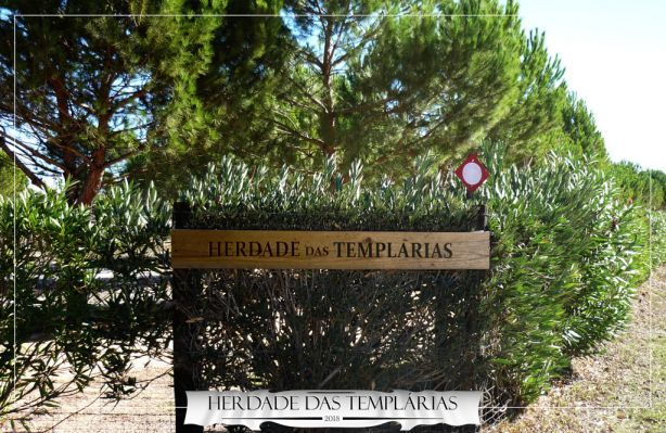 Foto 1 de Herdade das Templárias