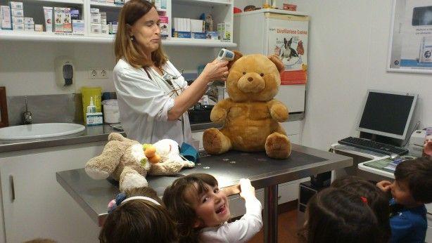 Foto 2 de Clínica Veterinária Vale do Couto, Lda