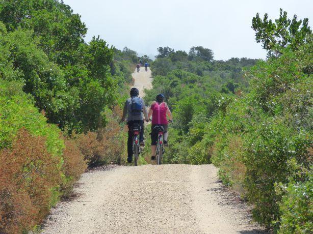Foto 2 de Portugal Best Cycling - Visitas Guiadas de Bicicleta