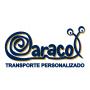 Caracol - Transporte Personalizado