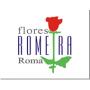Flores Romeira Roma