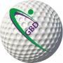 Logo Golf BioDynamics - Biomecânica para Golfe